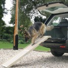 Hondenloopplank DogStep