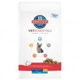 Hill's VetEssentials Mature Adult Mini Hond