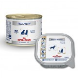 Royal Canin Veterinary Diet - Hond/Kat Recovery